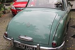 magnette green 006
